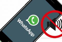 5 Cara Mengatasi Whatsapp Tidak Berbunyi Saat Pesan Masuk